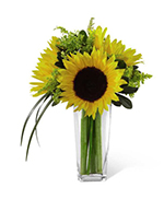 Sunshine Daydream Bouquet